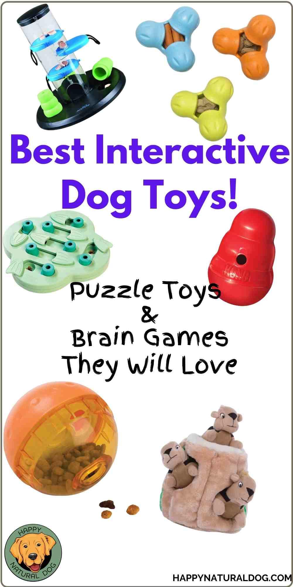 Interactive Dog Toys pin
