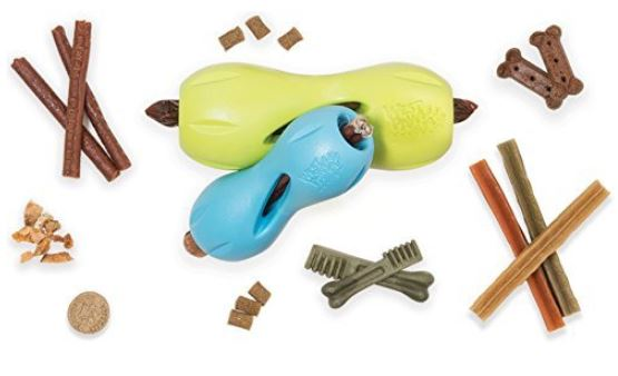 West Paw Quizl, one of the best teething toys for puppies