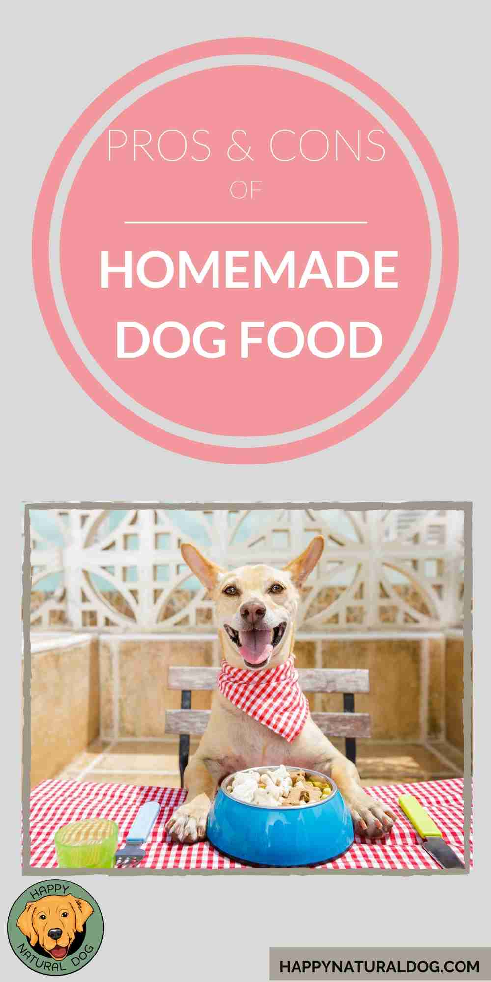 Pros & Cons of Homemade Dog Food