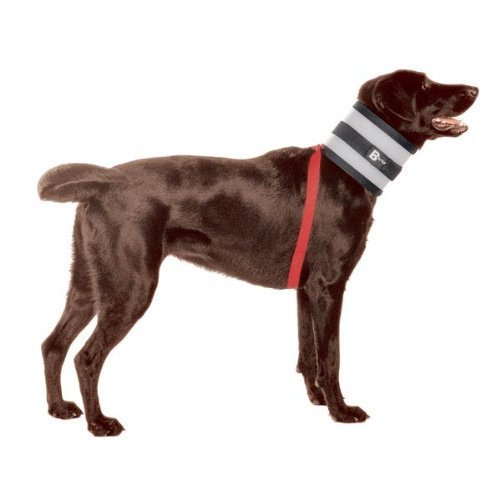 Bitenot collar cone of shame alternative