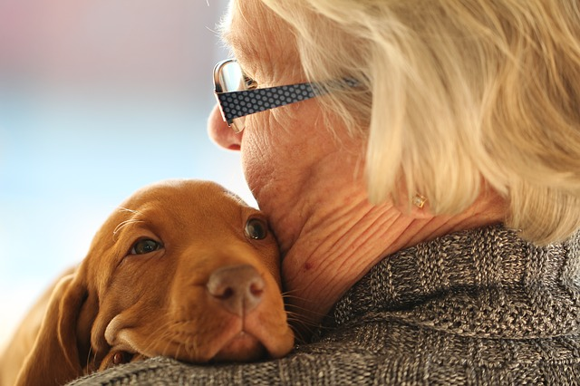 emotional support dog with elderly person