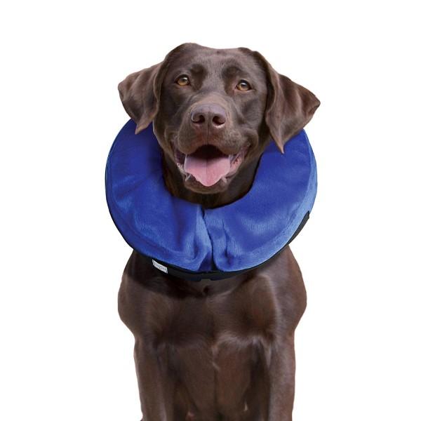 kong cloud collar cone of shame alternative