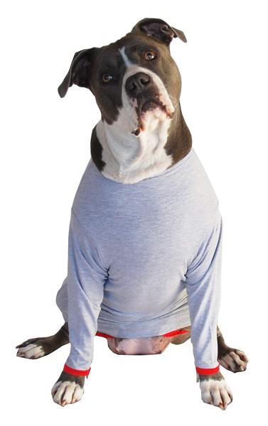 Proforpets dog suit cone of shame alternative
