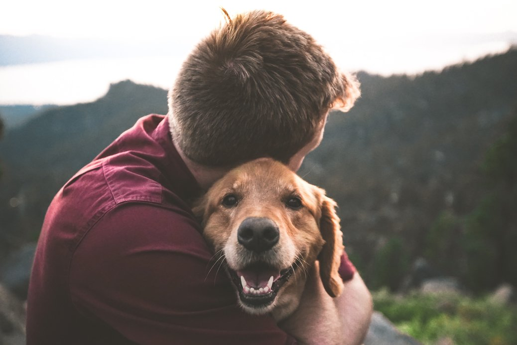 14 Amazing Emotional Support Dog Benefits – Some Will Surprise You!