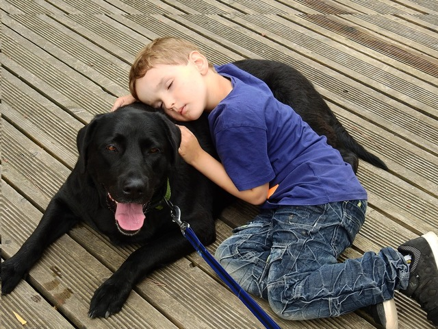 emotional support dog and boy