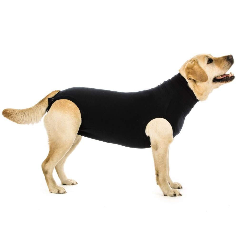 suitical recovery suit dog cones alternatives