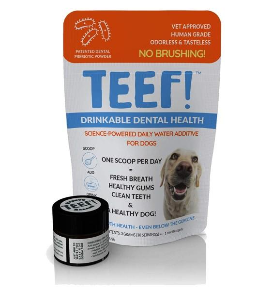 teef dog teeth cleaning powder (562 x 600)