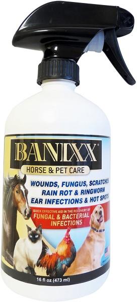 Banixx spray for seasonal allergies in dogs