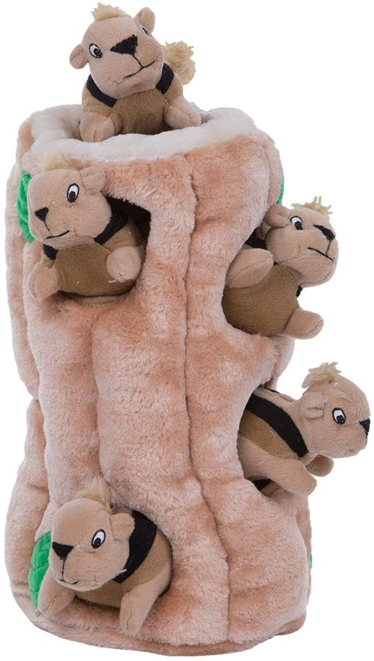 squirrel hide and seek enrichment toys for dogs
