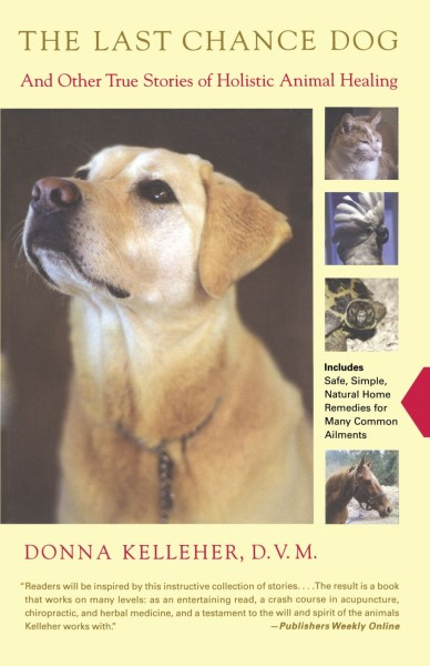 Picture of the book Last Chance Dog by Donna Kelleher