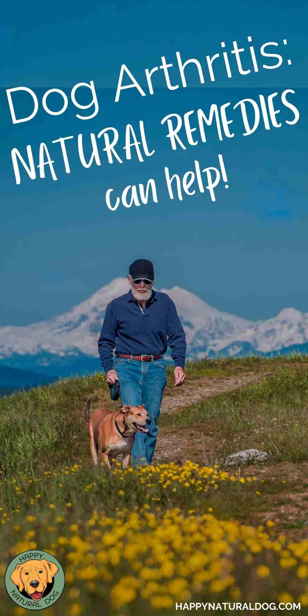 Natural Dog Arthritis Remedies