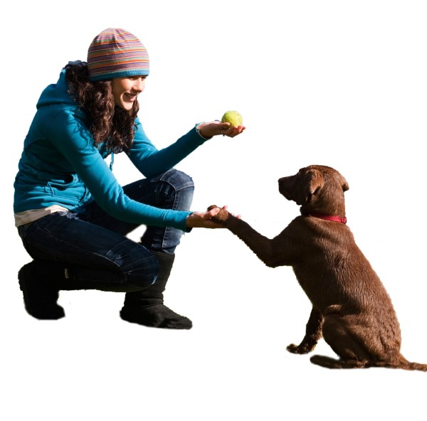 woman asking dog for shake before throwing tennis ball