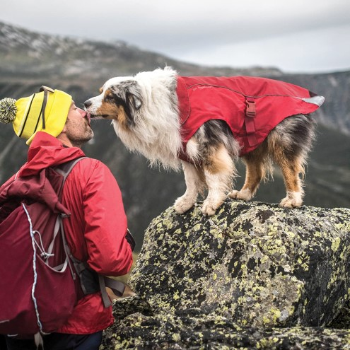 dog wearing Kurgo north country raincoat on hike