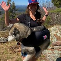 Woman carrying siberian husky in Pack a Paw harness on her front