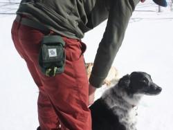Turdlebag dog poop disposal bag for hiking