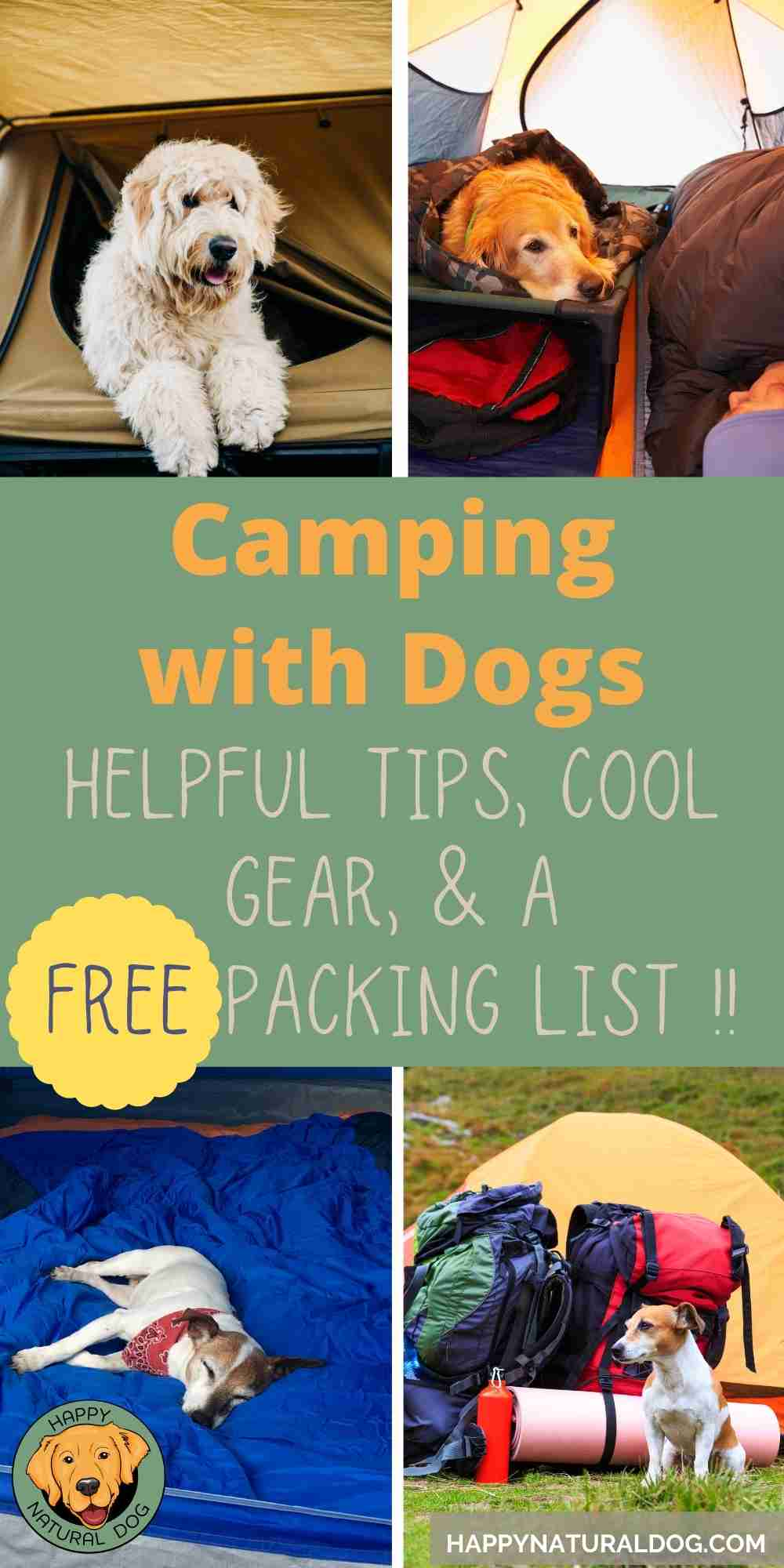 Camping With Dogs pin
