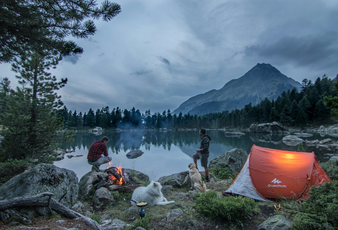 camping with dogs by a lake and mountains
