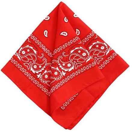 red bandana for emergency dog muzzle
