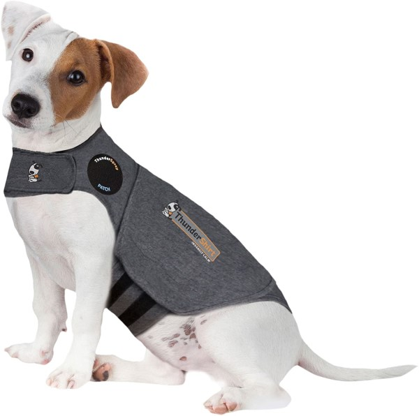 Thundershirt on a dog