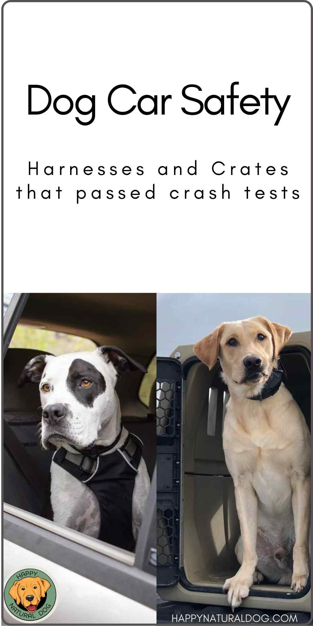 dog car safety harnesses and crates