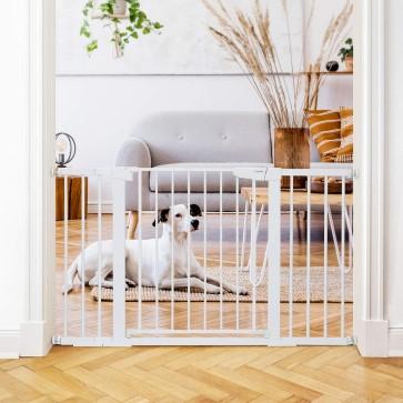 medium baby gate for slow dog introduction