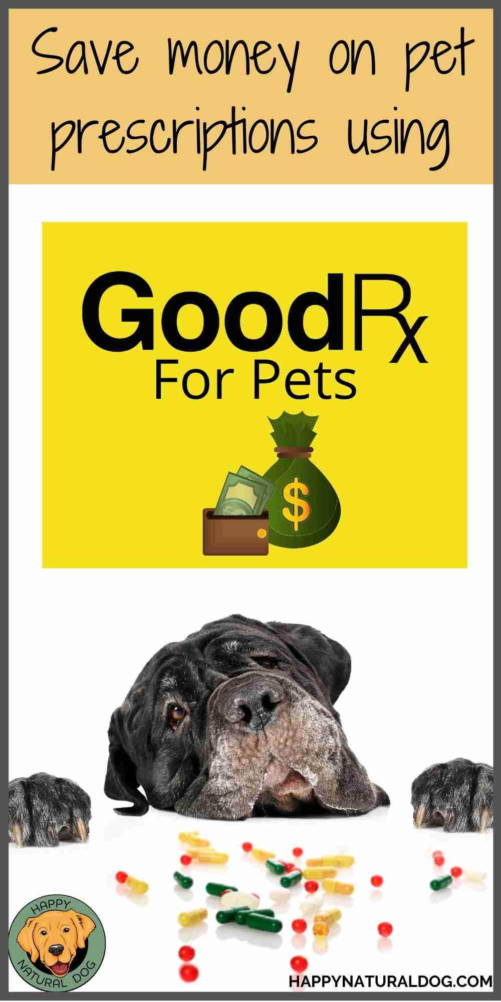 Good Rx for Dogs pin