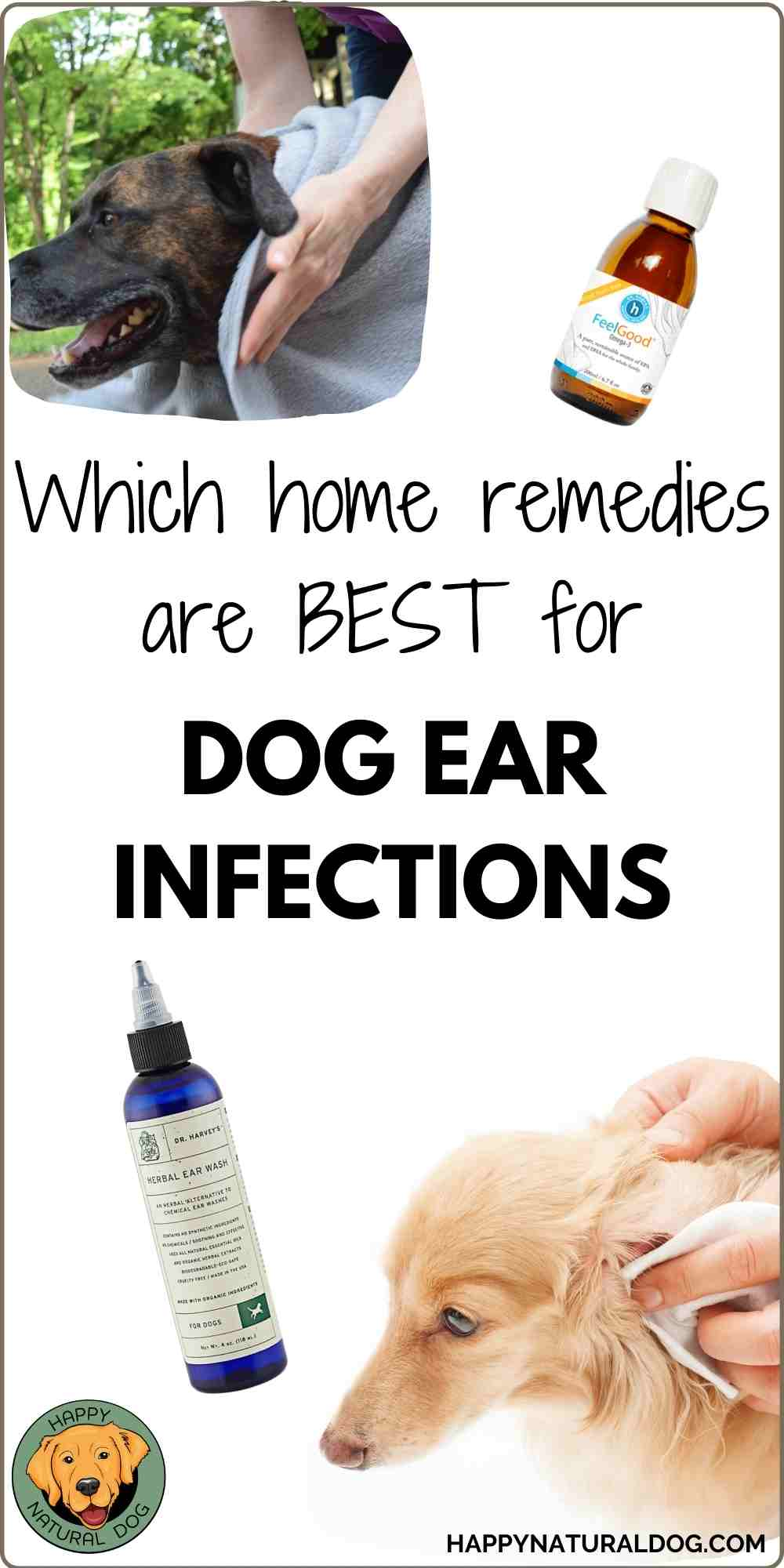 Home Remedies for Dog Ear Infections pin for PInterest