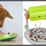 Clever Food Dispensing Toys For Dogs –<br />Including Raw Food Puzzle Toys!