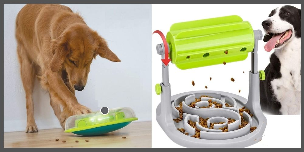 Food Dispensing Toys for relieving stress in dogs