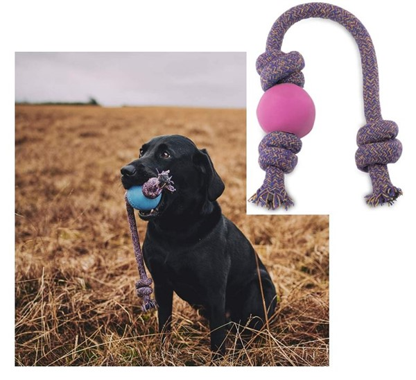 Becoball dog gifts rope and ball toy
