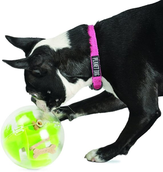 planet dog orbee tuff mazee interactive dog toy puzzle dog toy