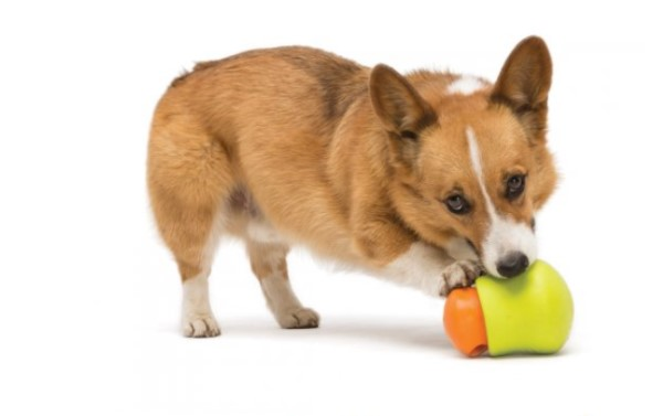 West Paw Toppl combined food dispensing toy for dogs