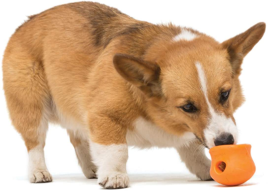 West Toy Topple one piece raw food puzzle toy for dogs
