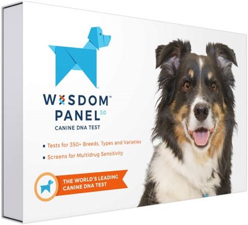 Dog DNA test gift for dog lovers