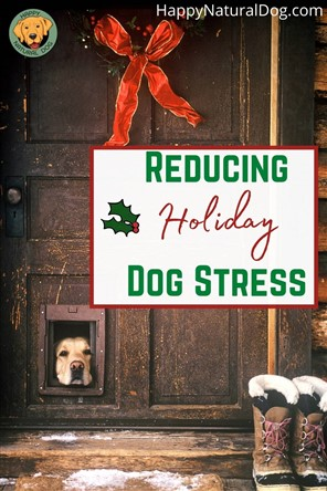 reducing holiday dog stress pin with lab peeking out door