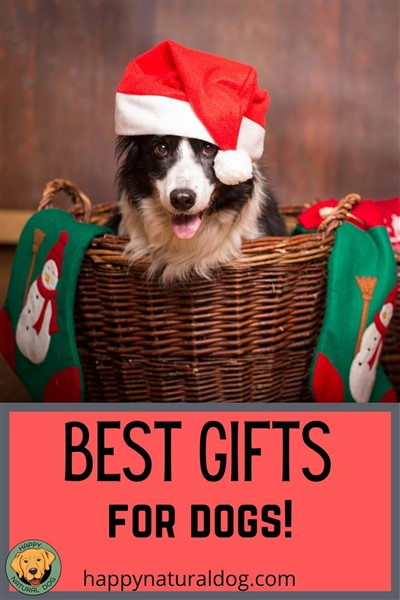 Best gifts for dog pin for Pinterest