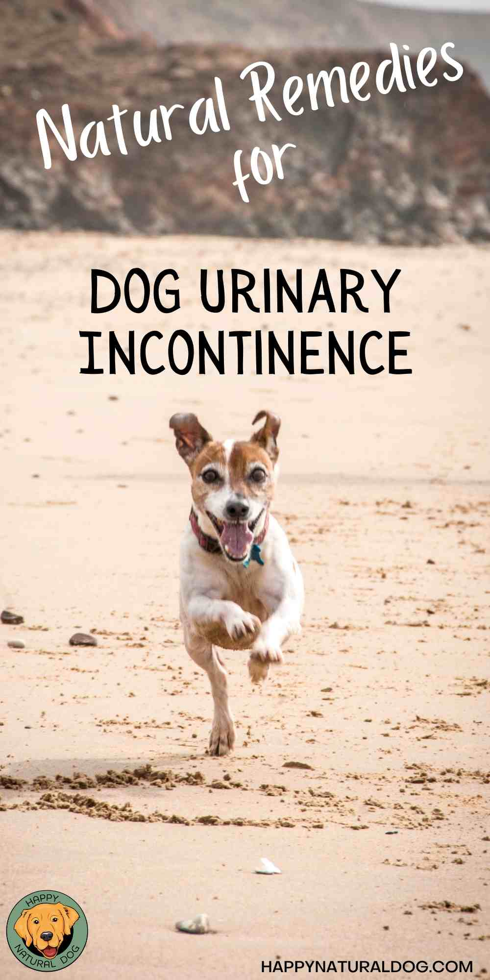 Dog urinary incontinence pin