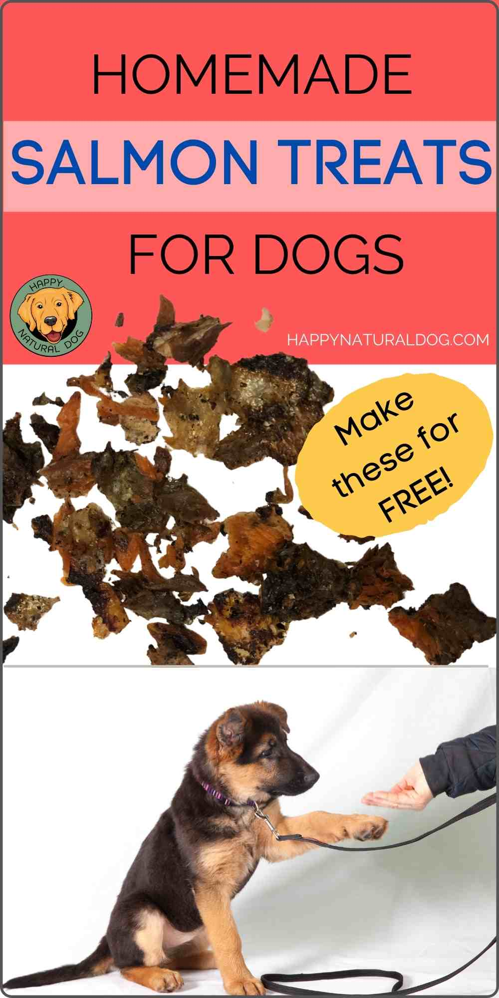 Homemade Salmon Dog Treats