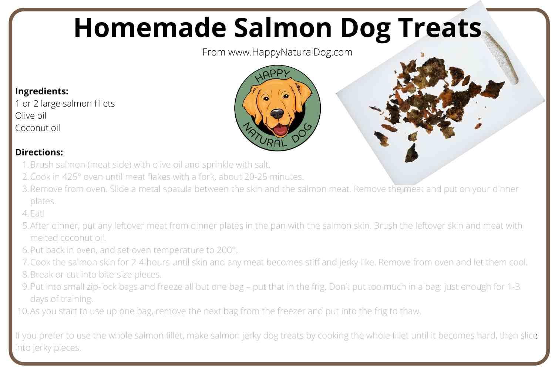 Homemade Salmon Dog Treats Recipe