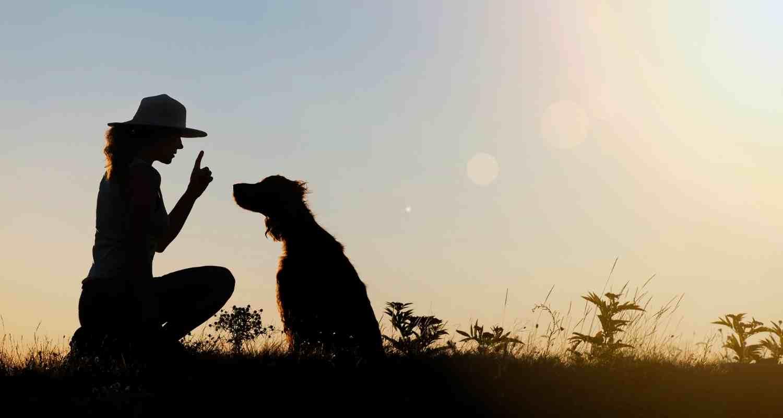 woman training dog using salmon treats for dogs