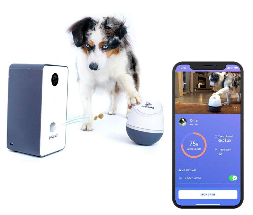 PupPod Rocker: Interactive Dog Toys Reach a Whole New Level!