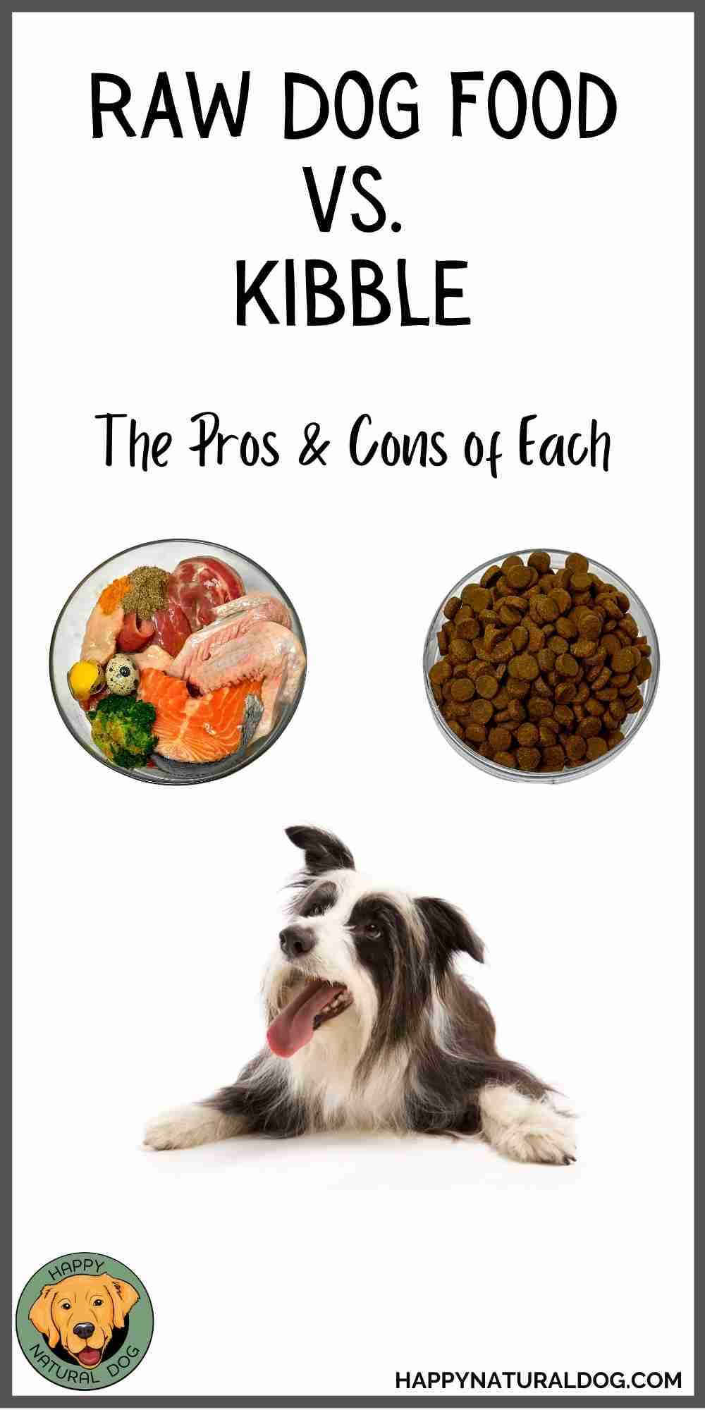 Raw dog food vs kibble pin