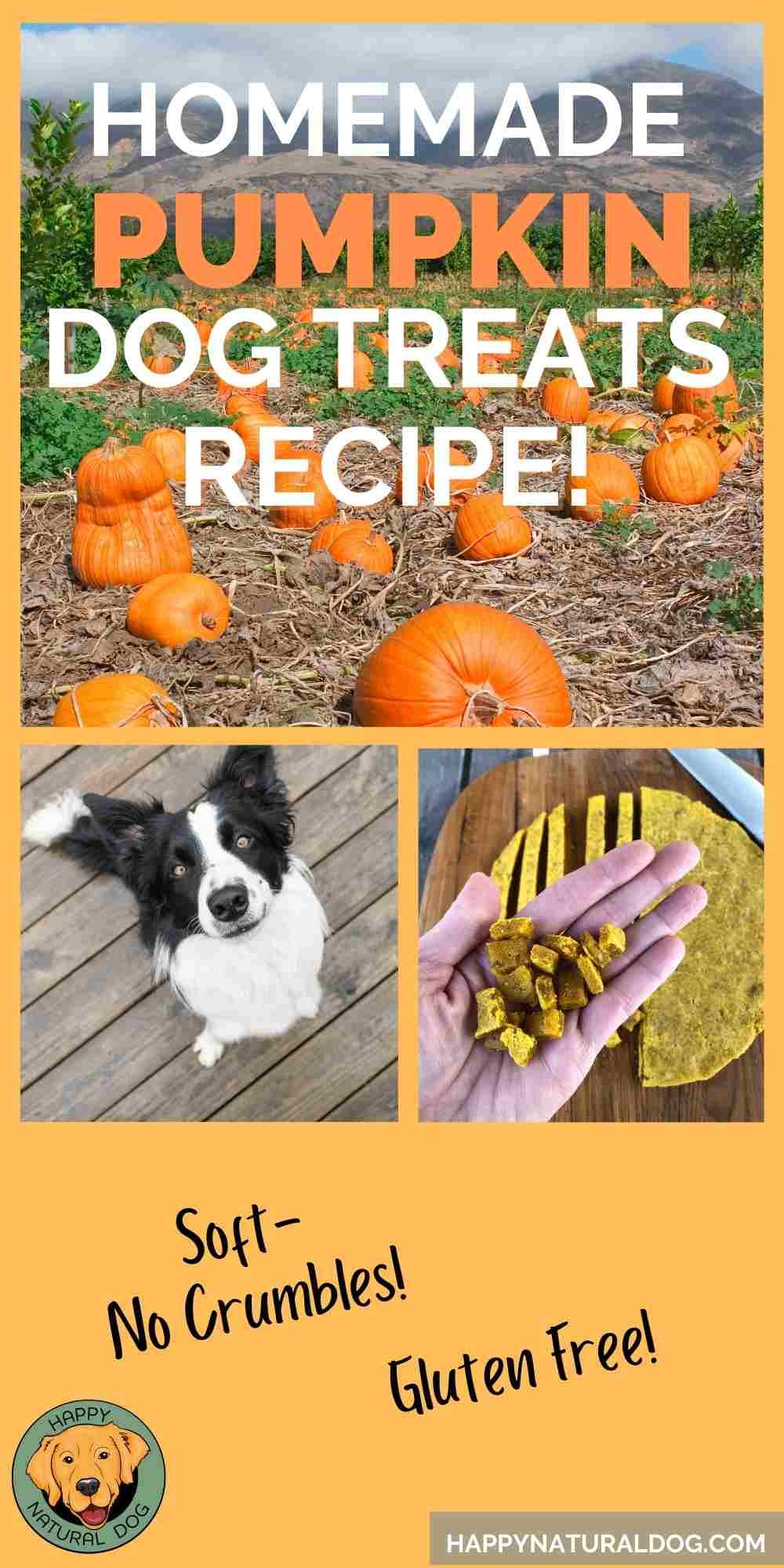 Homemade Pumpkin Dog Treats Recipe