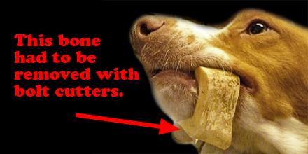 marrow bone rawhide alternative stuck on dogs jaw